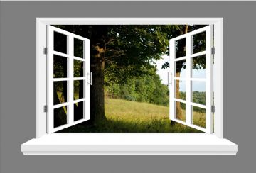 Tree, landscape 3D window view, wall art sticker